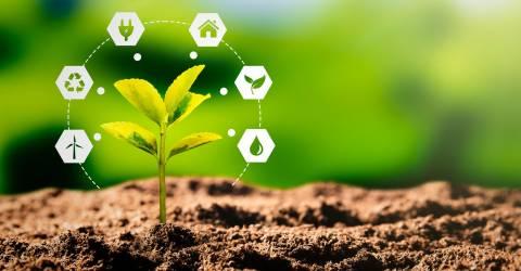 Een plantje dat net uit de grond komt met allerlei klimaatverbeterende opties